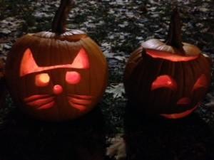 Cat's meow (3)